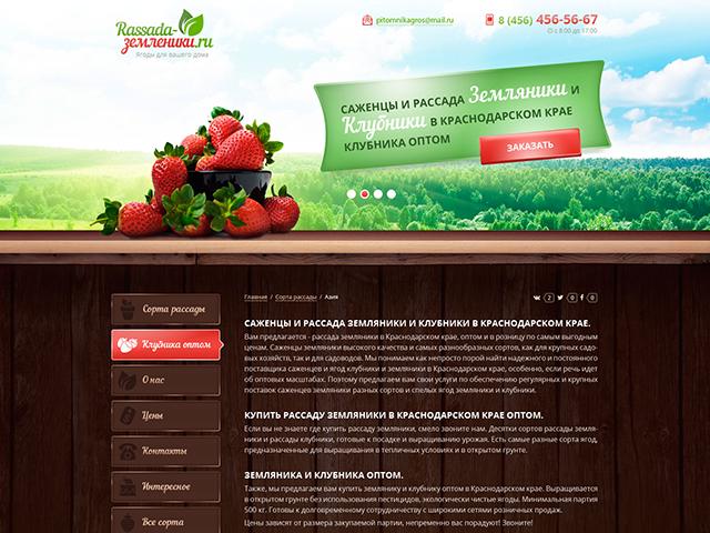 www.rassada-zemlyaniki.ru